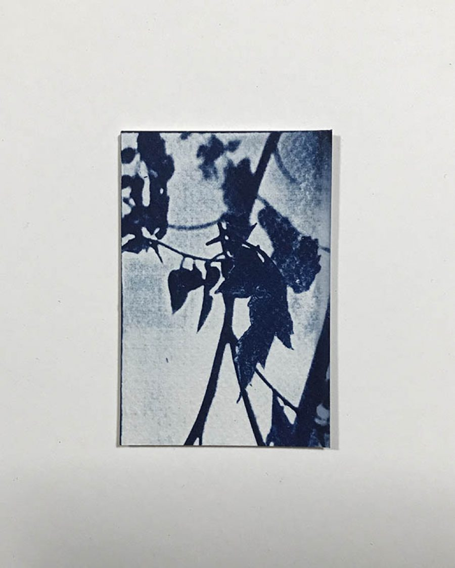 One | 9 x 6 cm, frame 23 x 19 cm | SOLD