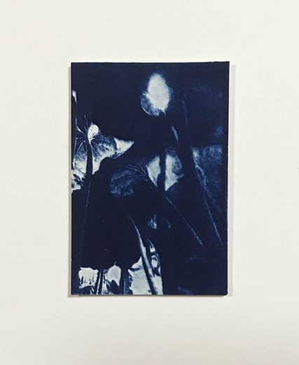 Three | 9,5 x 7 cm, frame 23 x 19 cm | €50,-