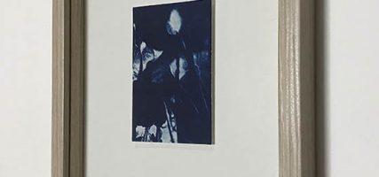 Three | 9 x 6 cm, frame 23 x 19 cm | €50,-
