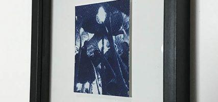 Four | 9,5 x 7 cm, frame 23 x 19 cm | €50,-