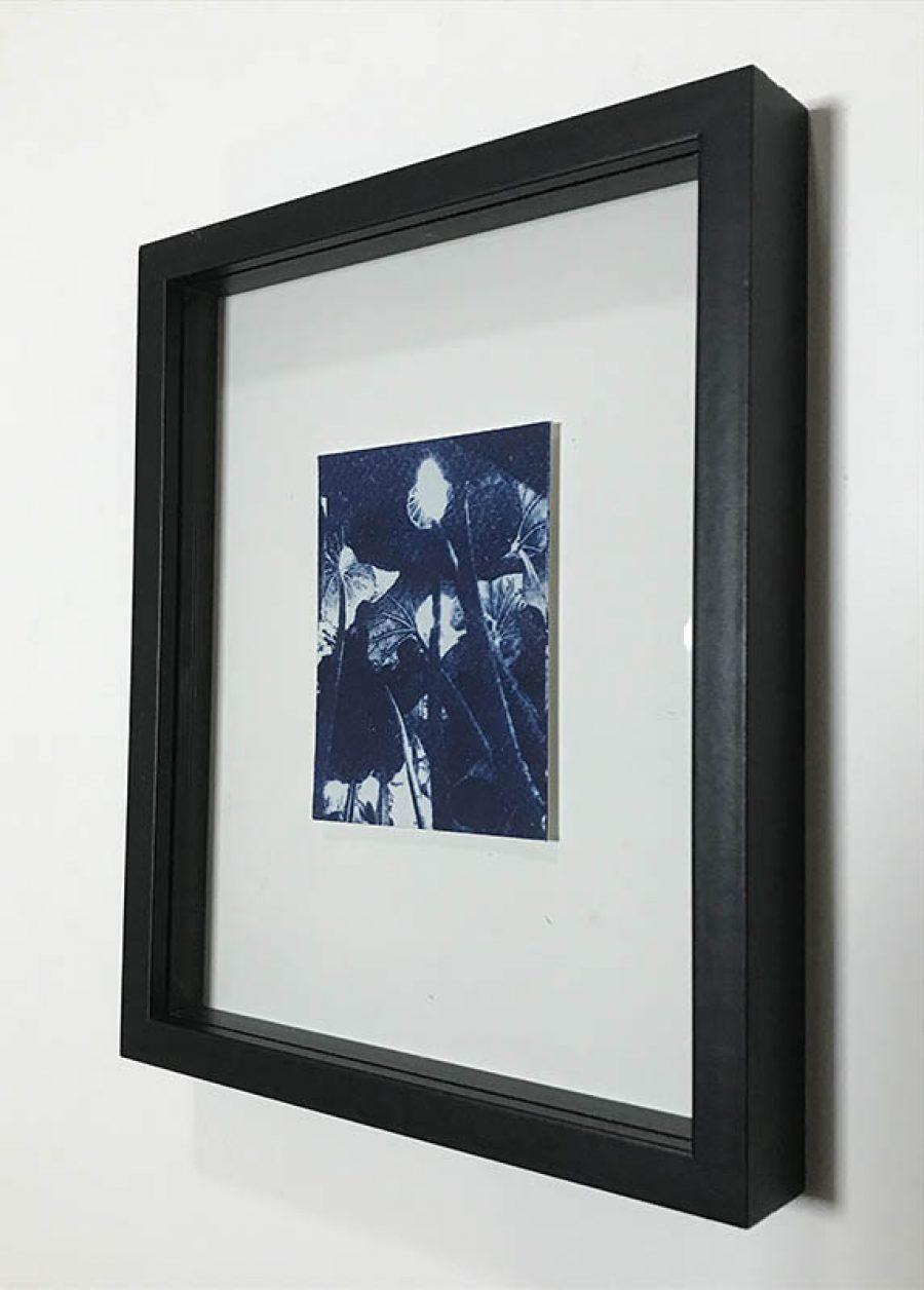 RESERVED Four    |   9,5 x 7 cm, frame 23 x 19 cm   |   €50,-